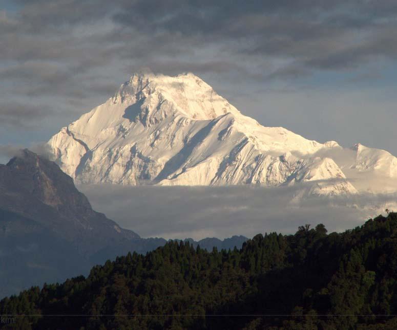 vad heter världens största berg